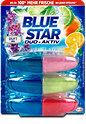 Blue Star Duo-Aktiv WC-Reiniger Duft-Mix Nachfüllungen