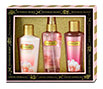 Victoria's Secret Sheer Love Set