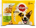 Pedigree Vital Protection Hundefutter Gelee