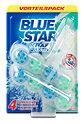 Blue Star Kraft-Aktiv WC-Reiniger Geruchsstopp
