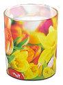 Profissimo Motiv-Glas Kerze Tulpen