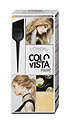 L'Oréal Colovista Hairpaint dauerhafte Haarfarbe
