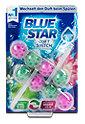 Blue Star WC Stein Duft-Switch Apfelblüte - Wasserlilie